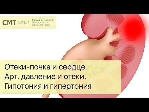 Почка при артериальной гипертензии
