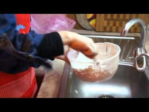 Пихта: посадка, уход, размножение и выращивание в домашних