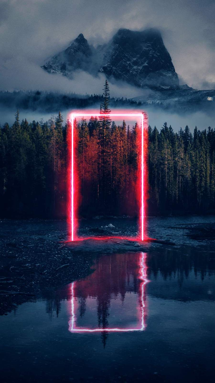 Forest Neon Light - iPhone Wallpapers