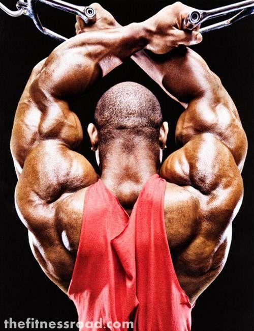 Best Back & Last Workout & Lower & Upper Back Exercises For men ...