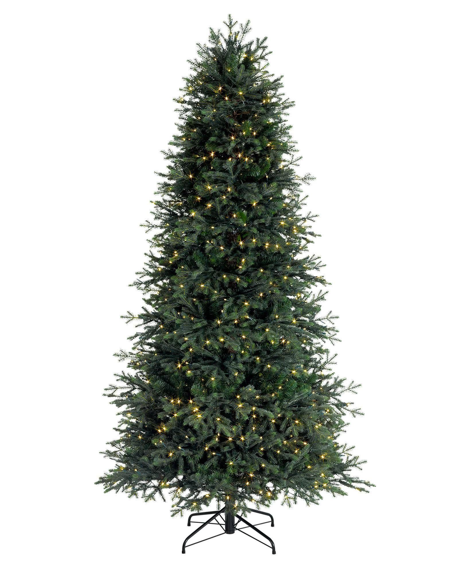Norway Spruce Narrow Tree-1 | Christmas | Pinterest | Christmas ...