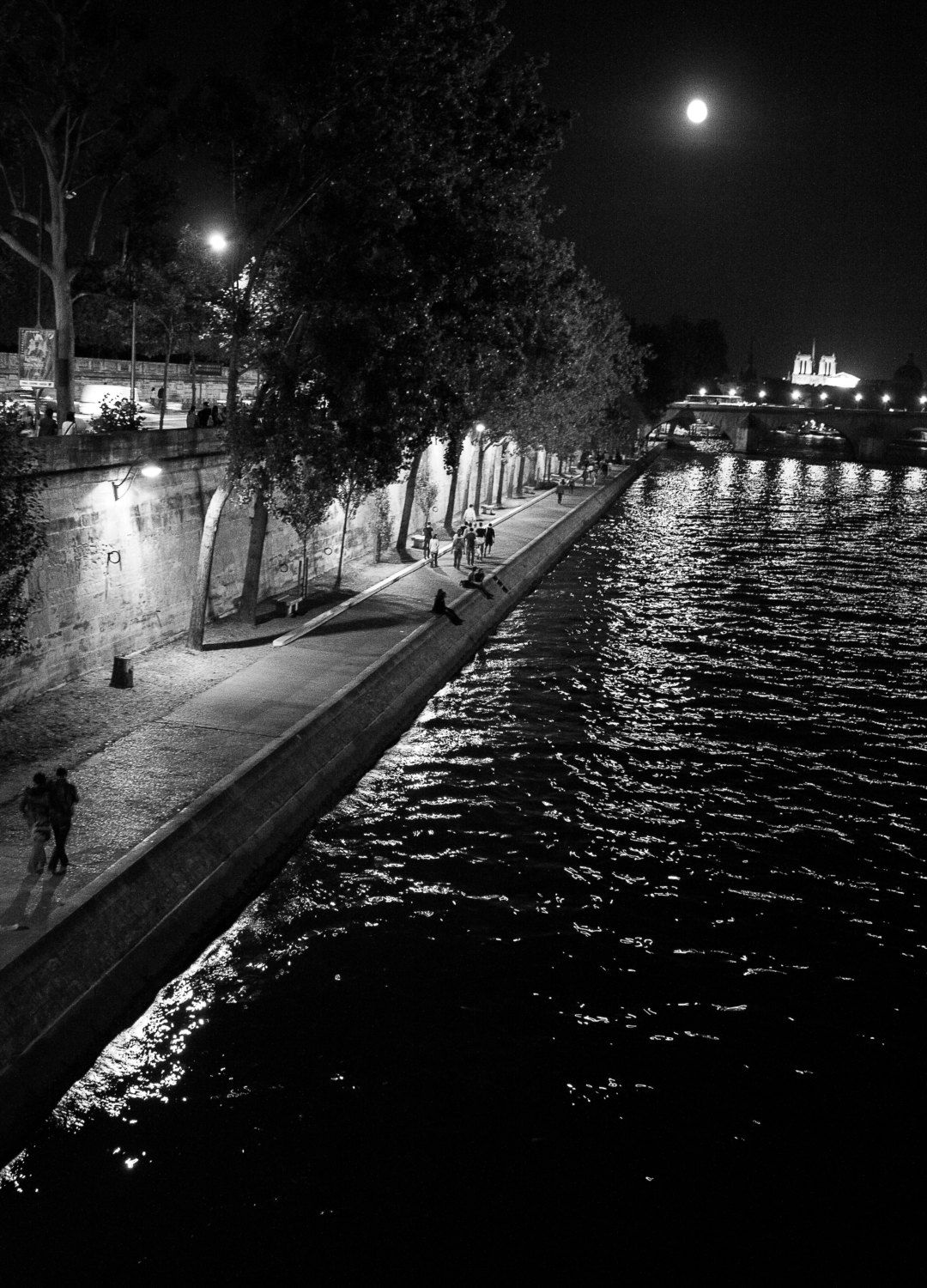 """Digital photography - """"Night Seine"""" in Paris by ShinavaPhotography on Etsy"""