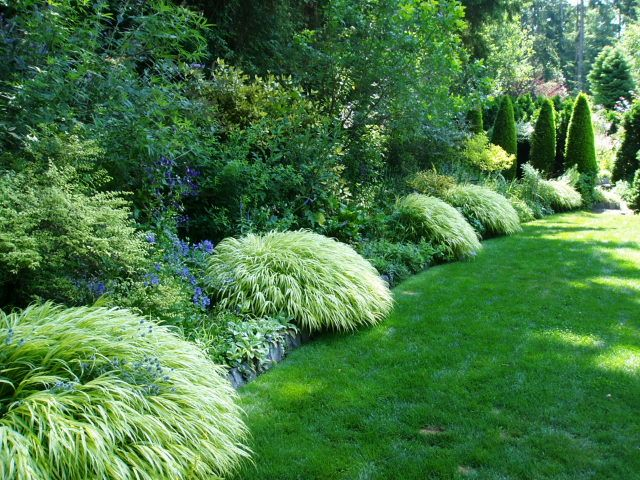 A Pacific Northwest Treasure Aims For A Comeback! Heronswood   Pacific  Northwest Gardens