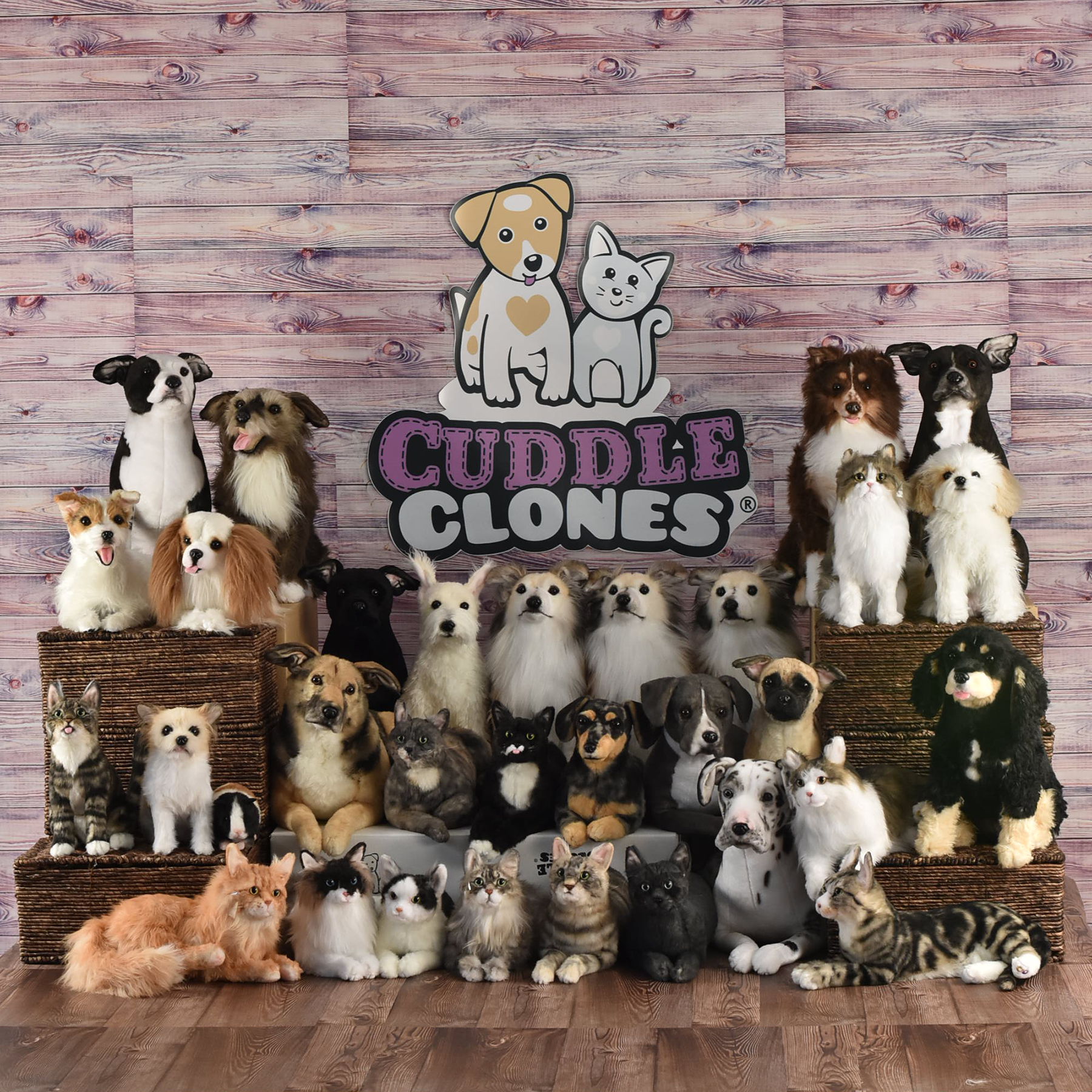 Some Of Our Newest Cuddle Clones Dogs Cats Horses Rabbits Guineapigs Ferrets Custom Stuffed Animal Bunny Mom Cuddling