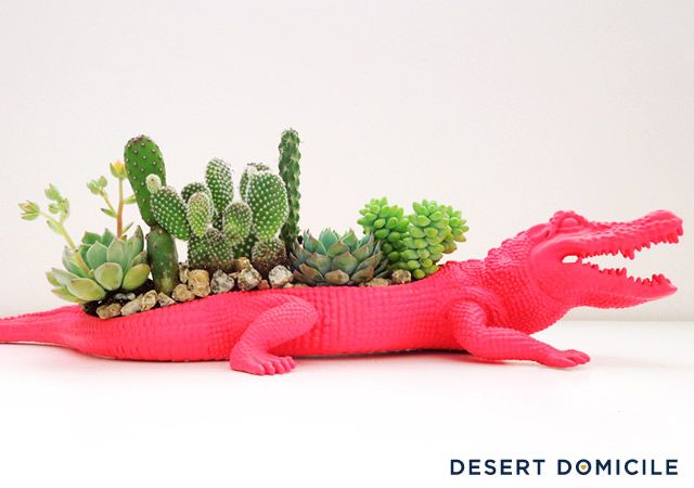 DIY Crocodile Succulent Planter- with a rubber crocodile that is spray painted