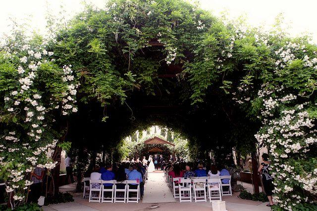 Wedding In Ceremonial Rose Garden By Albuquerque Biopark This Is It Botanical Gardens