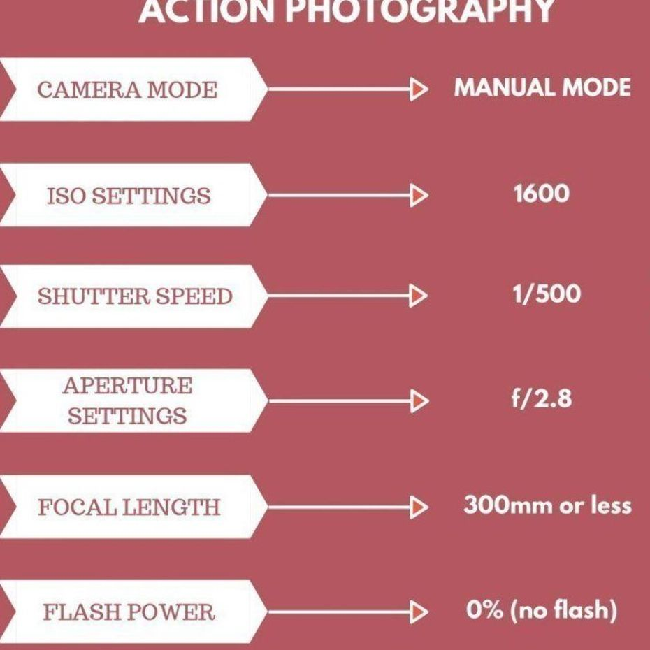 Photo of What are the Ideal Camera Settings for Studio