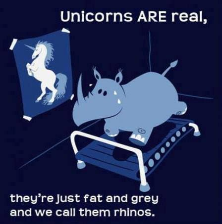 Not true there pink and fluffy and we call them unicorns