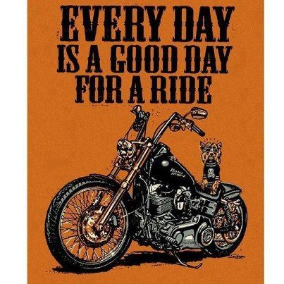 Everyday Is A Good Day For A Ride Bikerhounds Whd Wolverineharleydavidson Biker Quotes Harley Harley Davidson