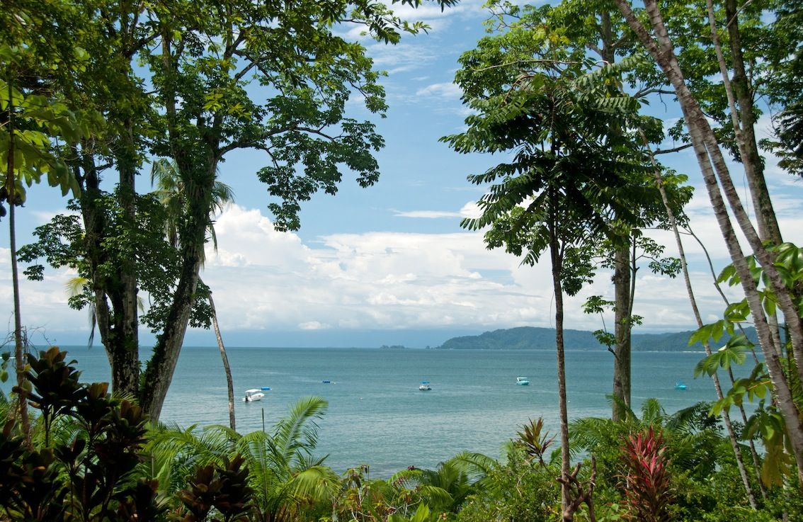 Welcome to the jungle! http://www.wikoltravel.com/blog_posts/eco-luxury-lodges-at-osa-the-best-remote-experience/