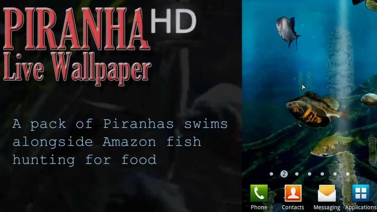 piranha live wallpaper hd 1.00 free download | best games wallpapers