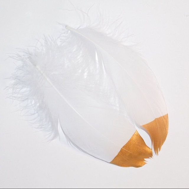 added a photo of their purchase feather craft boa