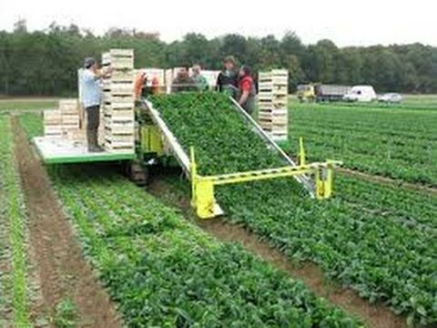 Amazing Agriculture Technology Modern Harvest Machine Modern