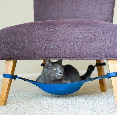 Που ξεκουράζεται η γάτα; | MeaColpa