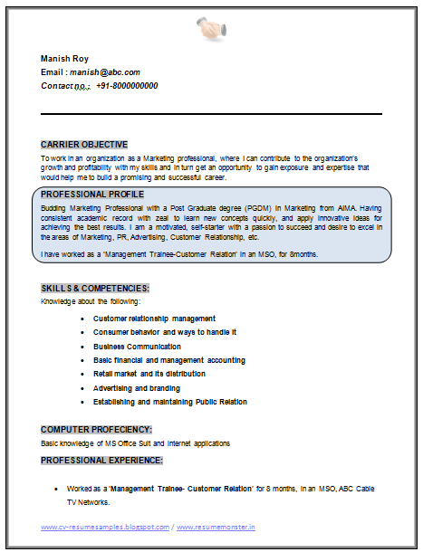 Professional Curriculum Vitae / Resume Template Sample Template Of