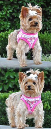 Doggie Design Dog Clothes Wholesale Dog Clothes Designer Dog