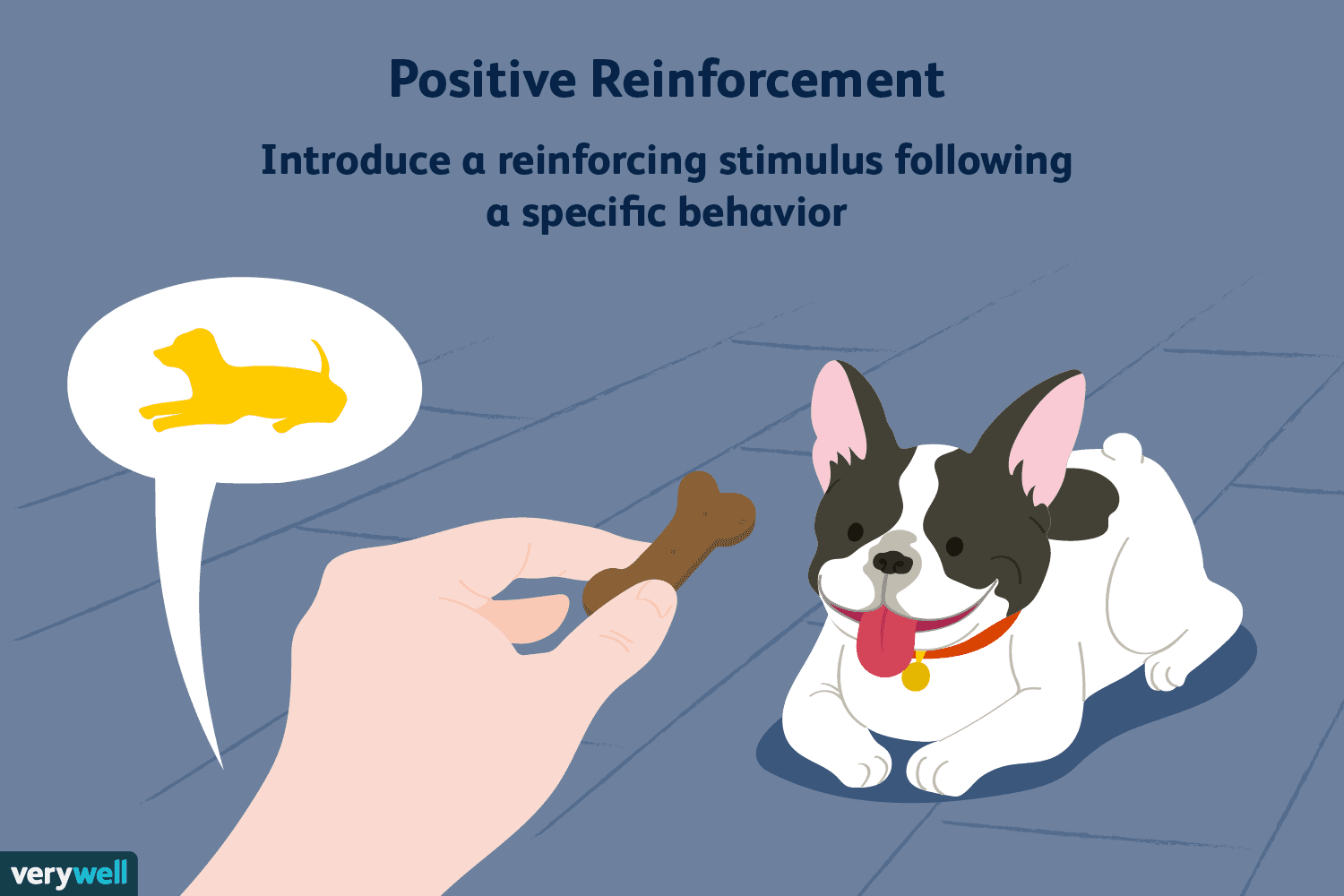 Positive Reinforcement Can Help Favorable Behaviors