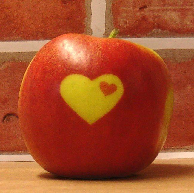 Herzapfel - der kleine Klassiker