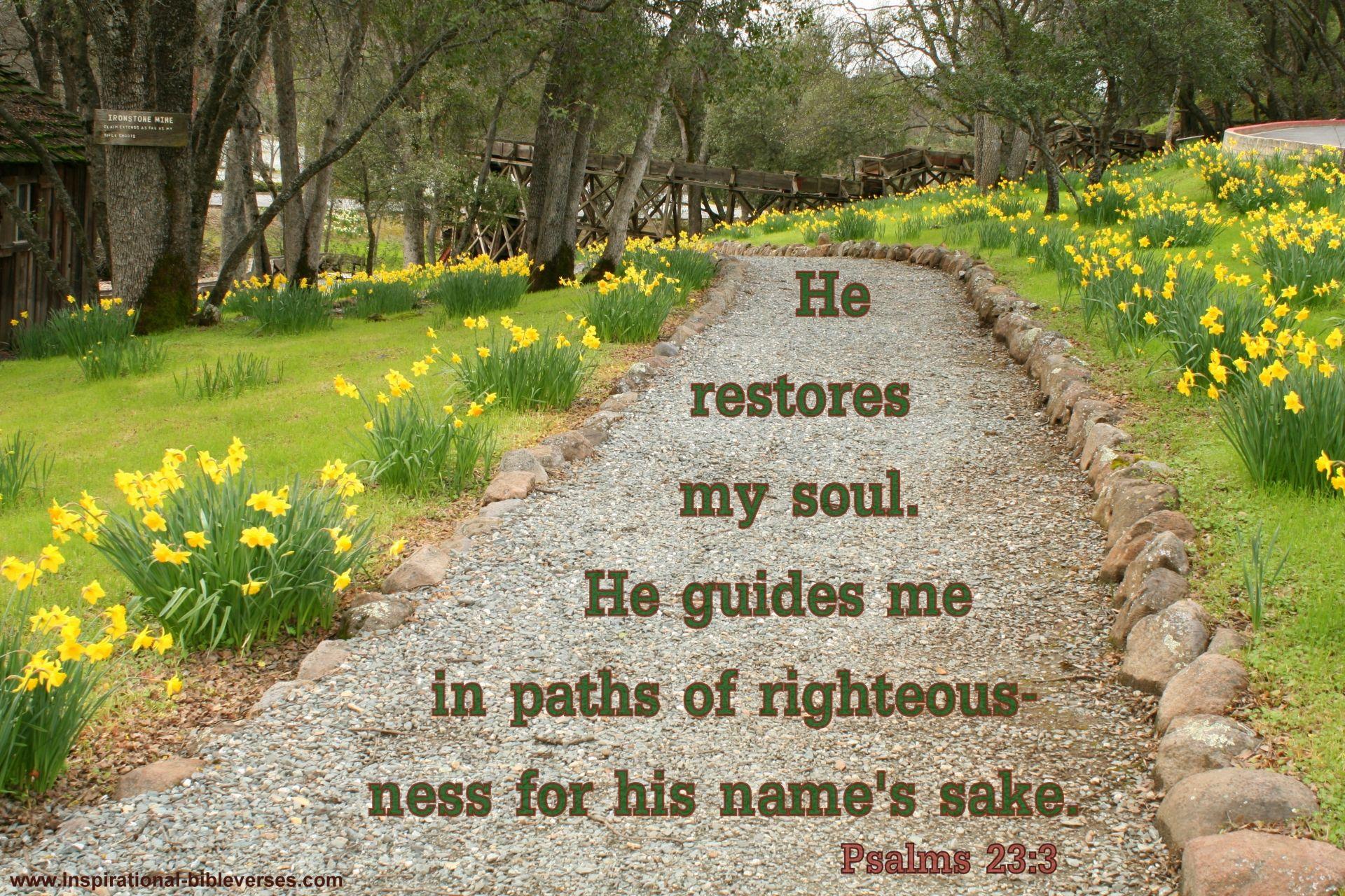 Psalms 23:3 (KJV) 3 He Restoreth My Soul: He Leadeth Me In