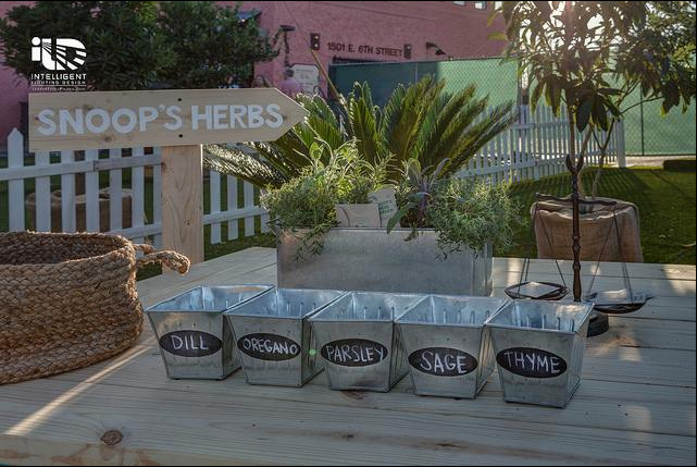Airbnb Park with HGTV. Snoop Dogg's Herb Garden at SXSW