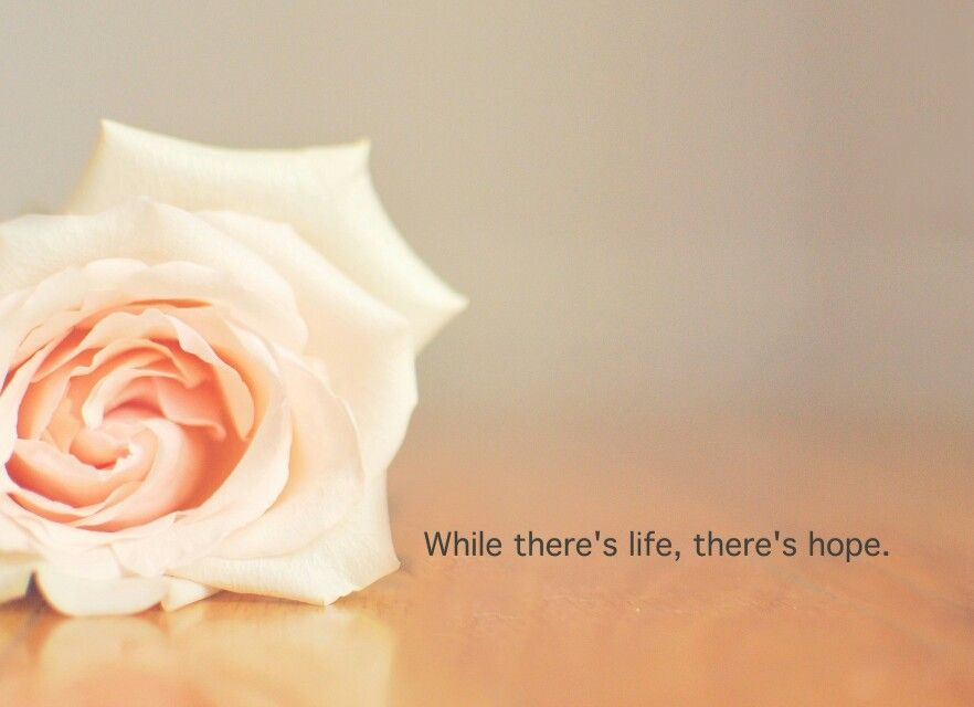 While there's life,  there's hope  #rose