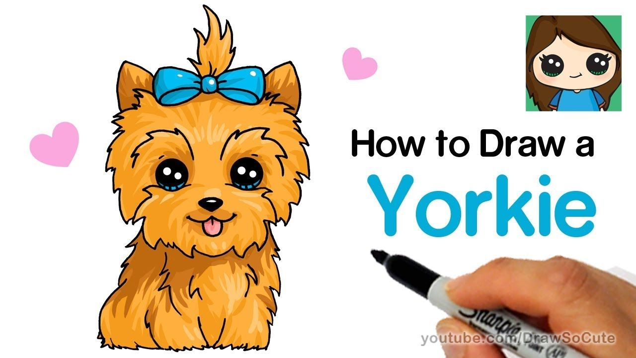 How to draw a yorkie easy jojo siwas bowbow