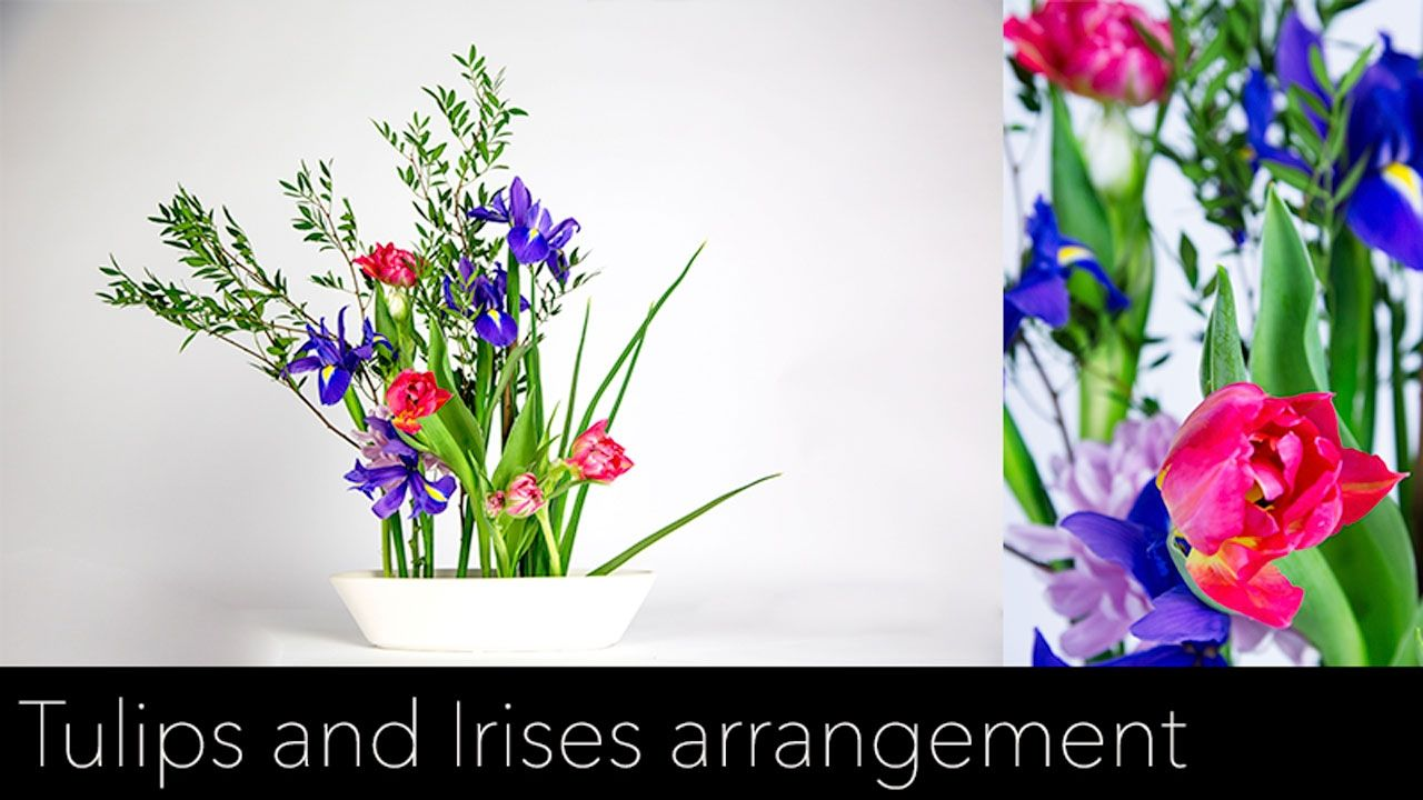 Blooming Dutch Tulips And Irises Flower Arrangement Ikebana