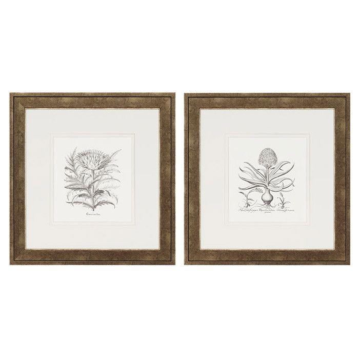 2 Piece Botanical Framed Print Set | Interior | Pinterest ...