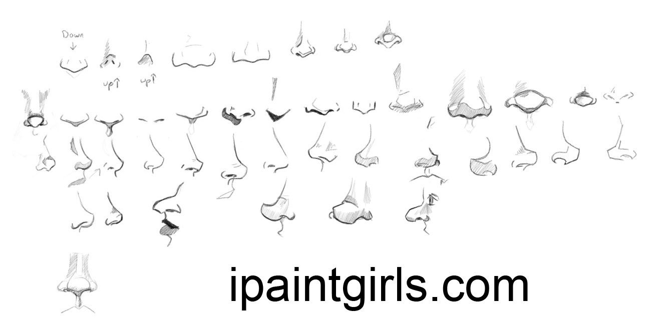 how to draw noses pinterest