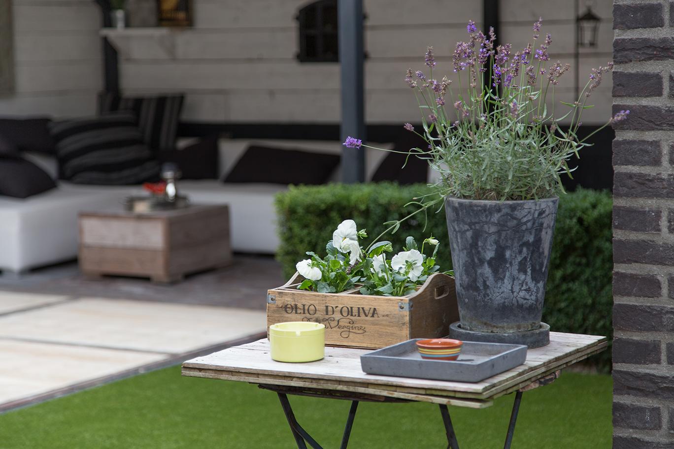 Lavendel In Grote Pot.Tuinen Van Vathorst Sfeermakers In De Tuin Een Grote Pot Met