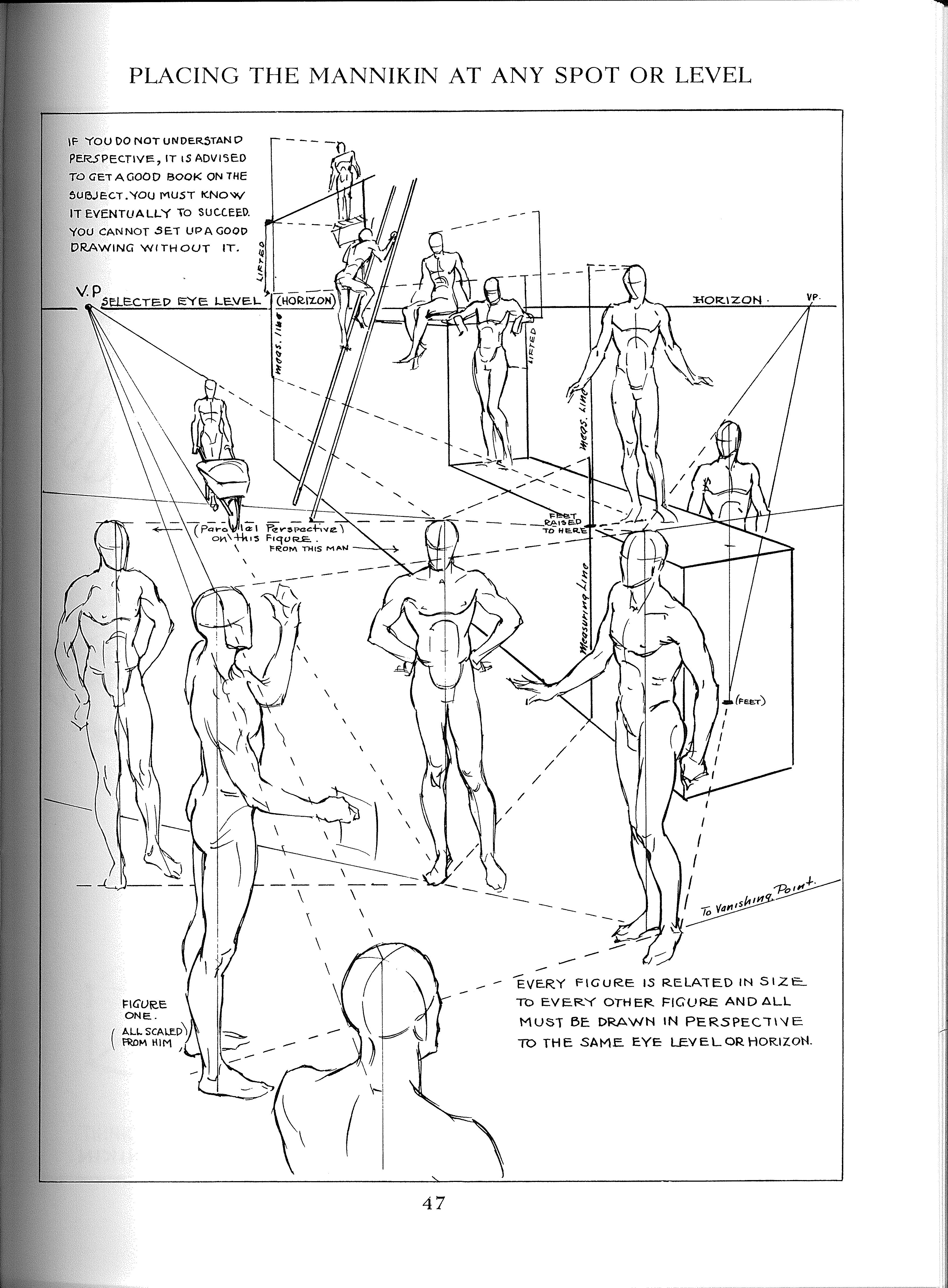 andrew loomis figure drawing perspective figure drawing Figure Profile Diagram andrew loomis figure drawing perspective