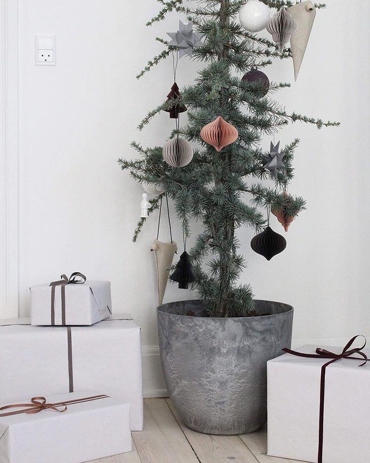 A cute and sustainable Christmas tree idea