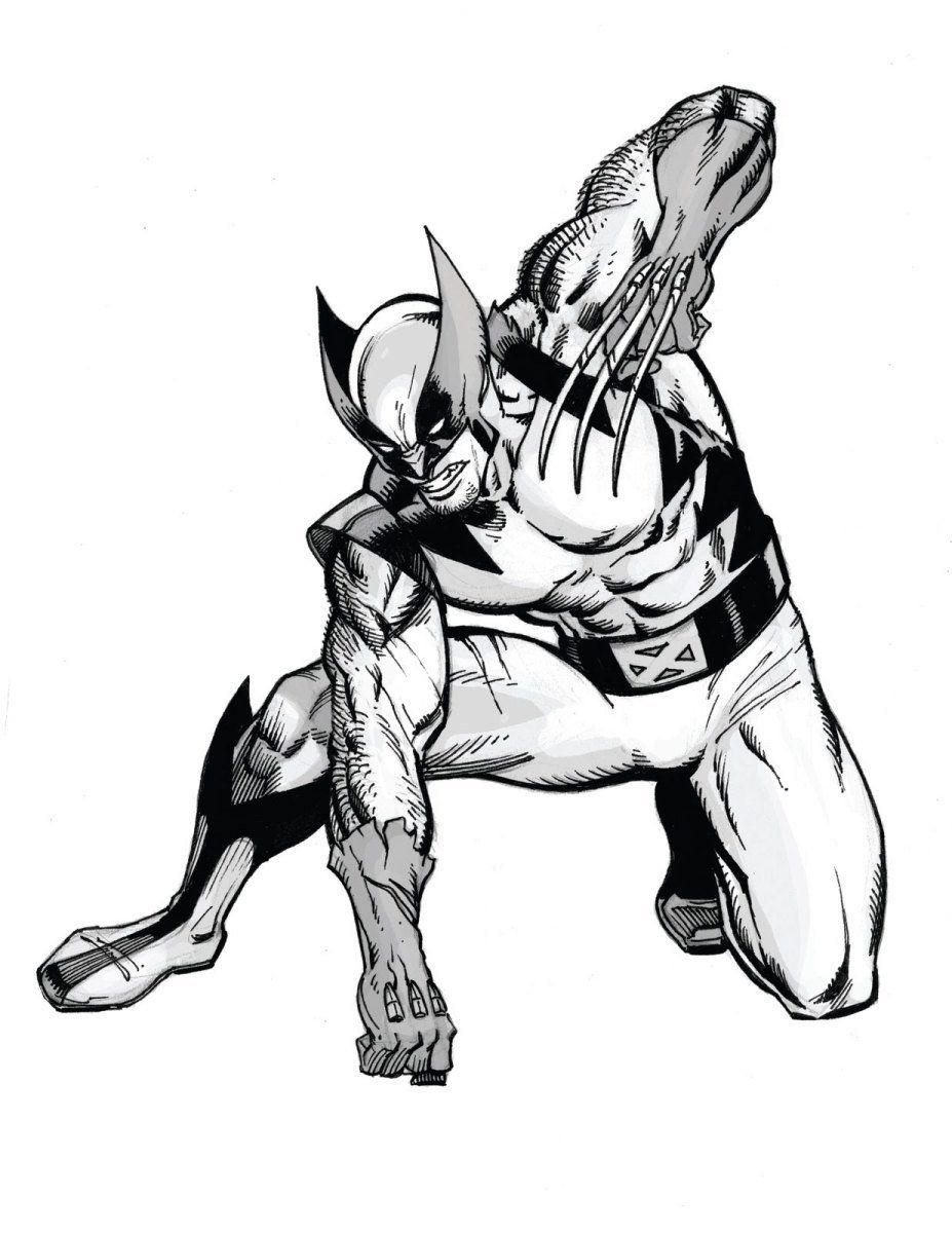 Wolverine Leono Sketches Black White Comics Y Wolverine