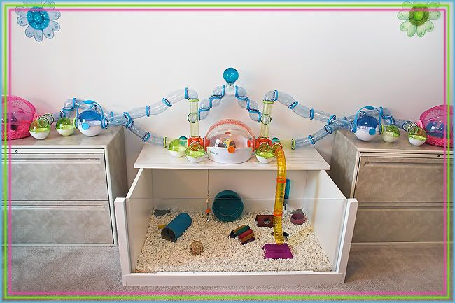 Diy from repurposed table upside down plus habitrail ovo for How to make a diy hamster cage