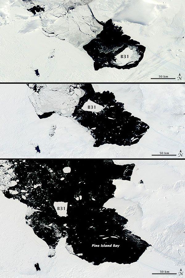 In november vorig jaar kwam een enorme ijsberg los van de Pine Island-gletsjer. NASA volgde de ijsberg – die ongeveer drie keer zo groot is ...