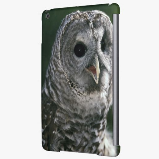 Love it! This USA, Washington State. Barred Owl (Strix varia) iPad Air Covers is completely customizable and ready to be personalized or purchased as is. It's a perfect gift for you or your friends.