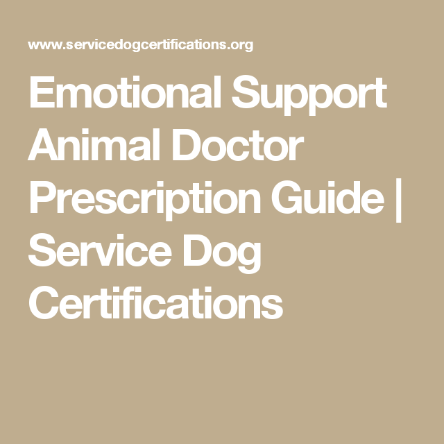 an esa letter is a prescription letter written by a licensed mental health professional that recommends your pet as your emotional support animal