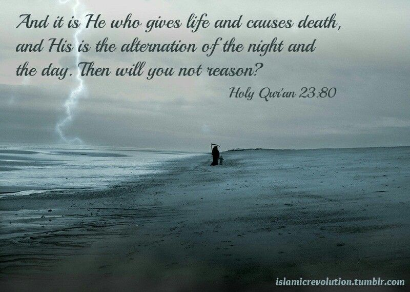 Pin By Siddiq Musa On Quran Verses Of The Day Pinterest Quran