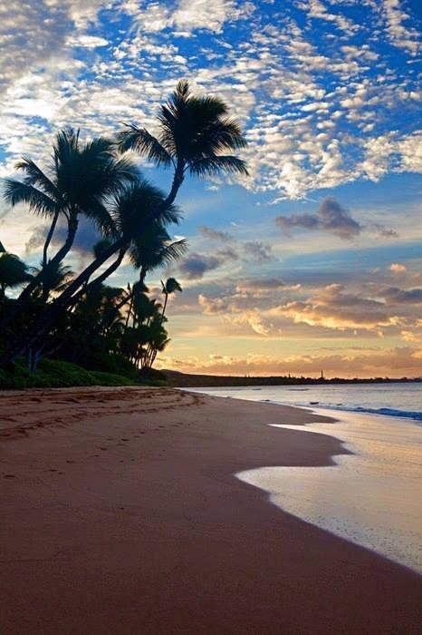 Beautiful beach in Maui,Hawaii