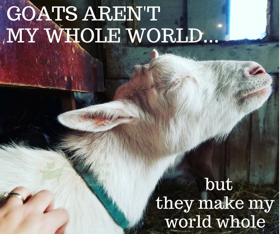 Goat Care, Backyard Farming