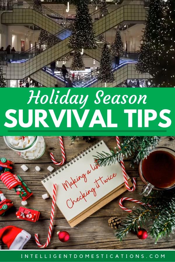 My Holiday Season Survival Tips