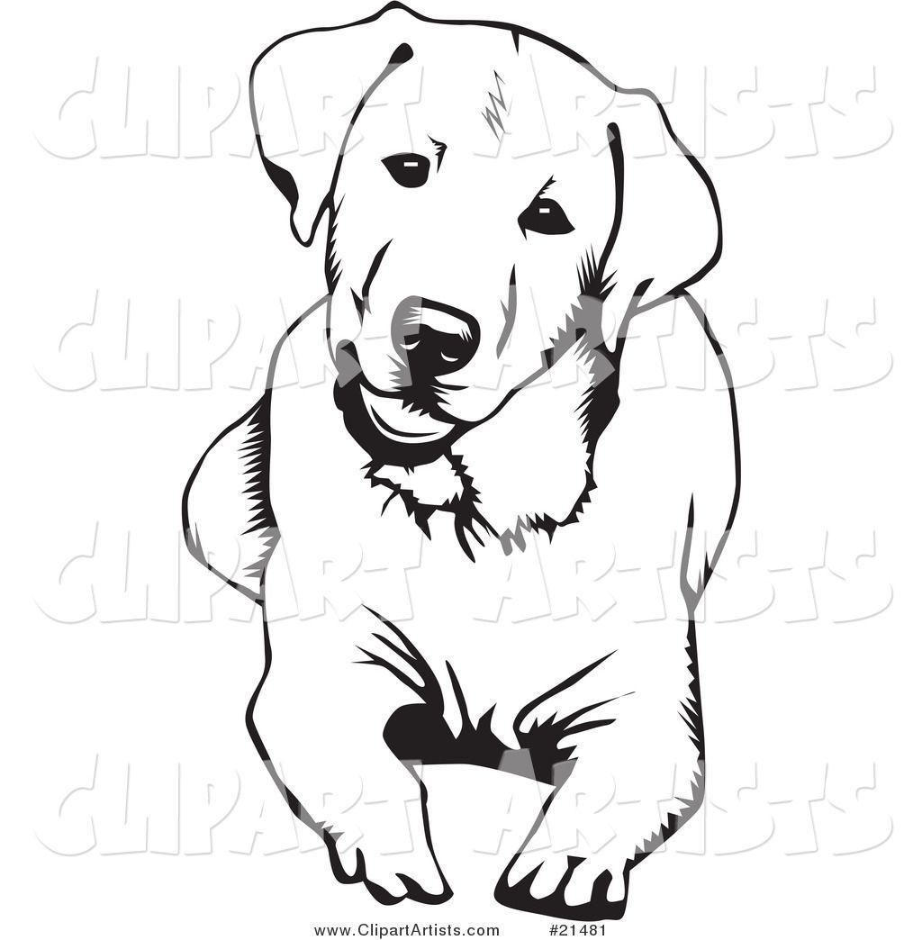 Labrador Sketch (With images) | Dog tattoos, Dog sketch ...