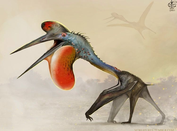 "vcreatures: "" Hatzegopteryx More Pterosaurs! I wanted to play with analogous displays and coloring with this guy.I also added a dash of reptile in there just for good measure. *DISCLAIMER: I'm not a paleo artist. So the exploration of sexual..."