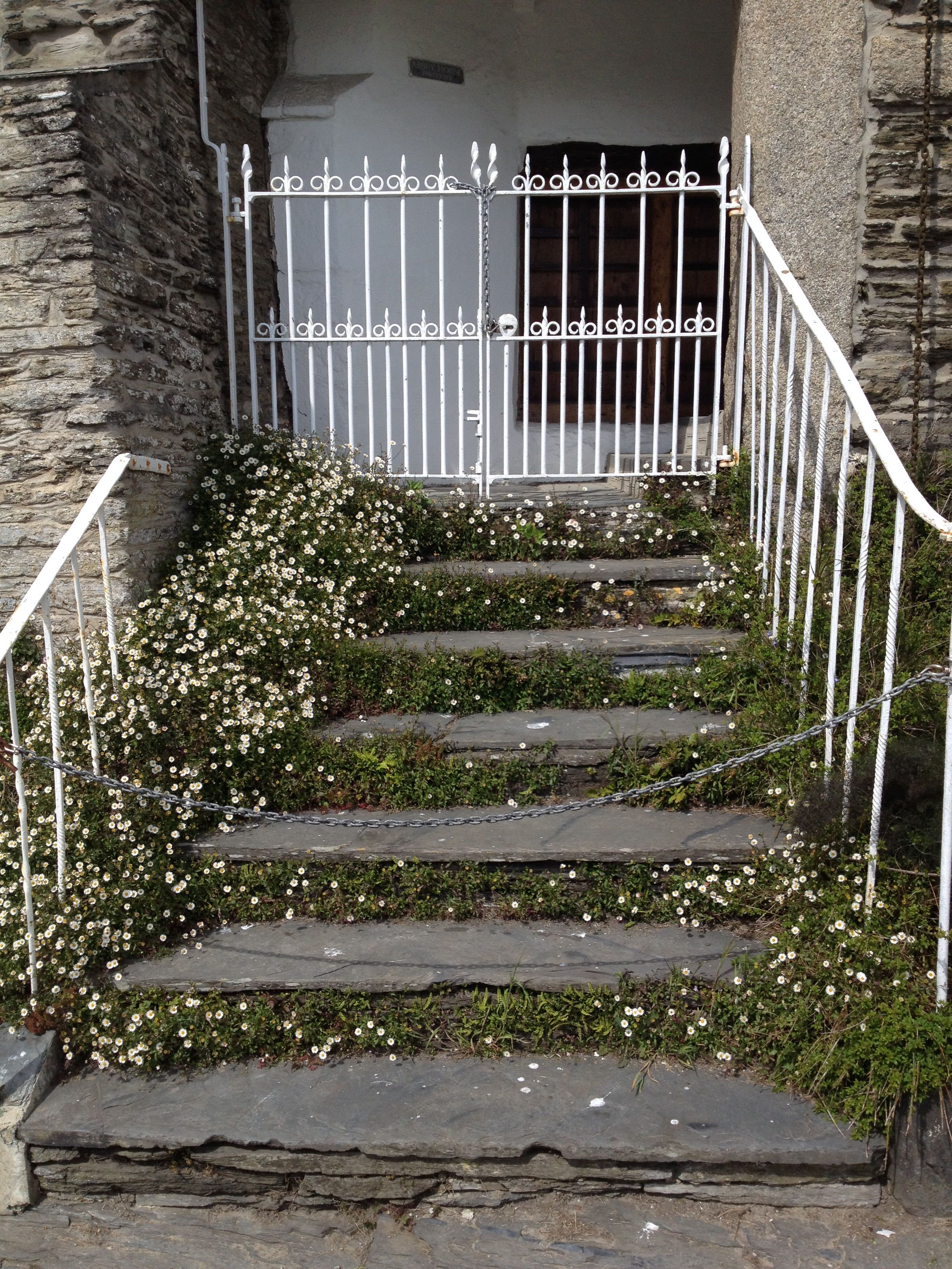 Best Daisies On Slate Steps Outdoor Structures Outdoor Paths 400 x 300