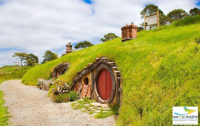 Matamata New Zealand Fotos Impresionismo Magico