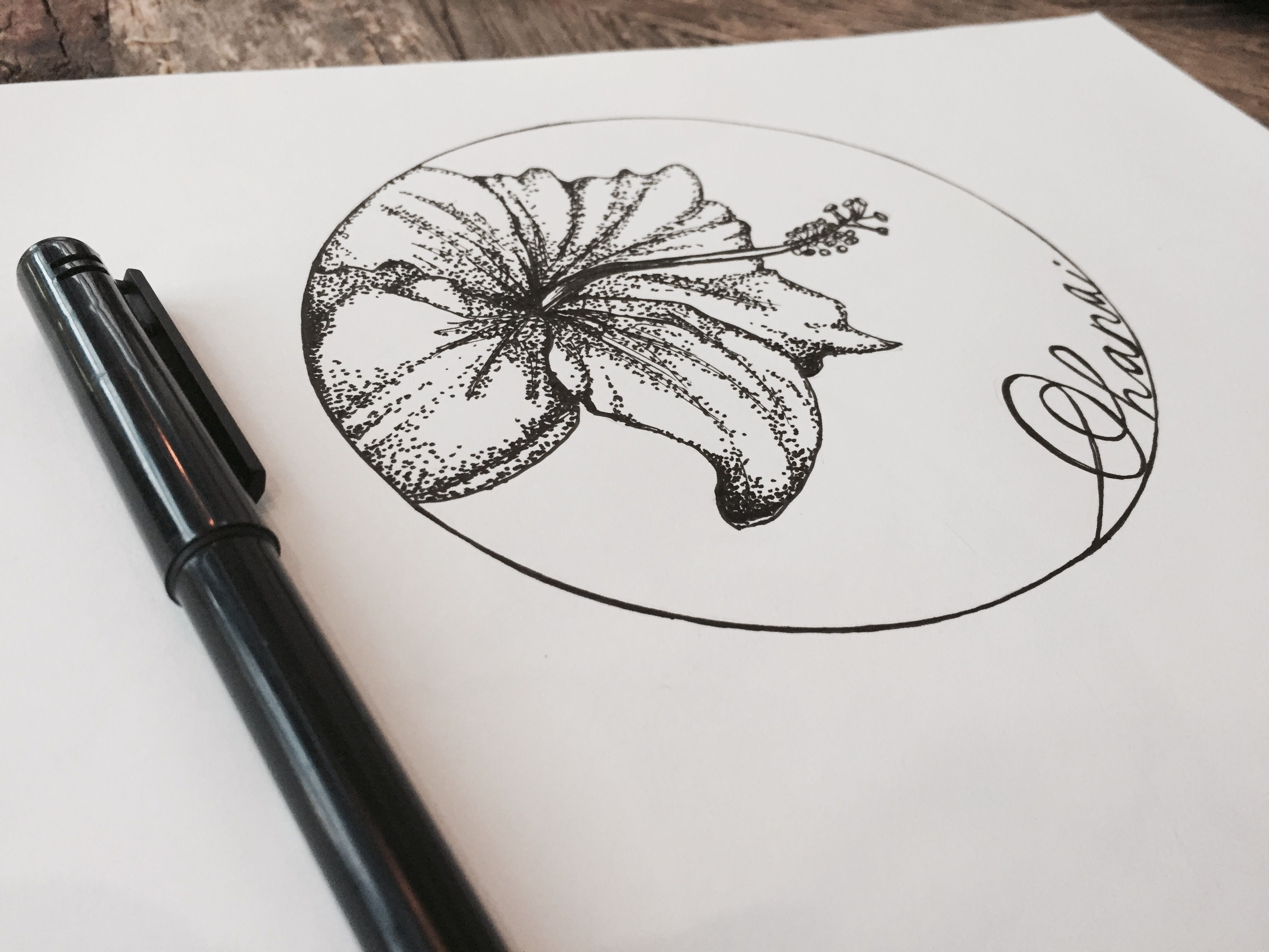 Hawaiian Hibiscus Flower Drawn In Black Fine Liner And A Stippling
