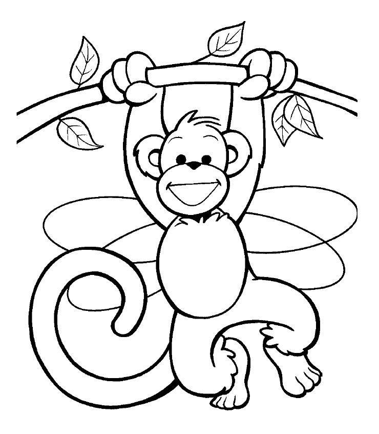 Dibujos De Animales Para Colorear Animalitos Para Colorear Animales Dibujos Para Colorear Dibujos Para Colorear
