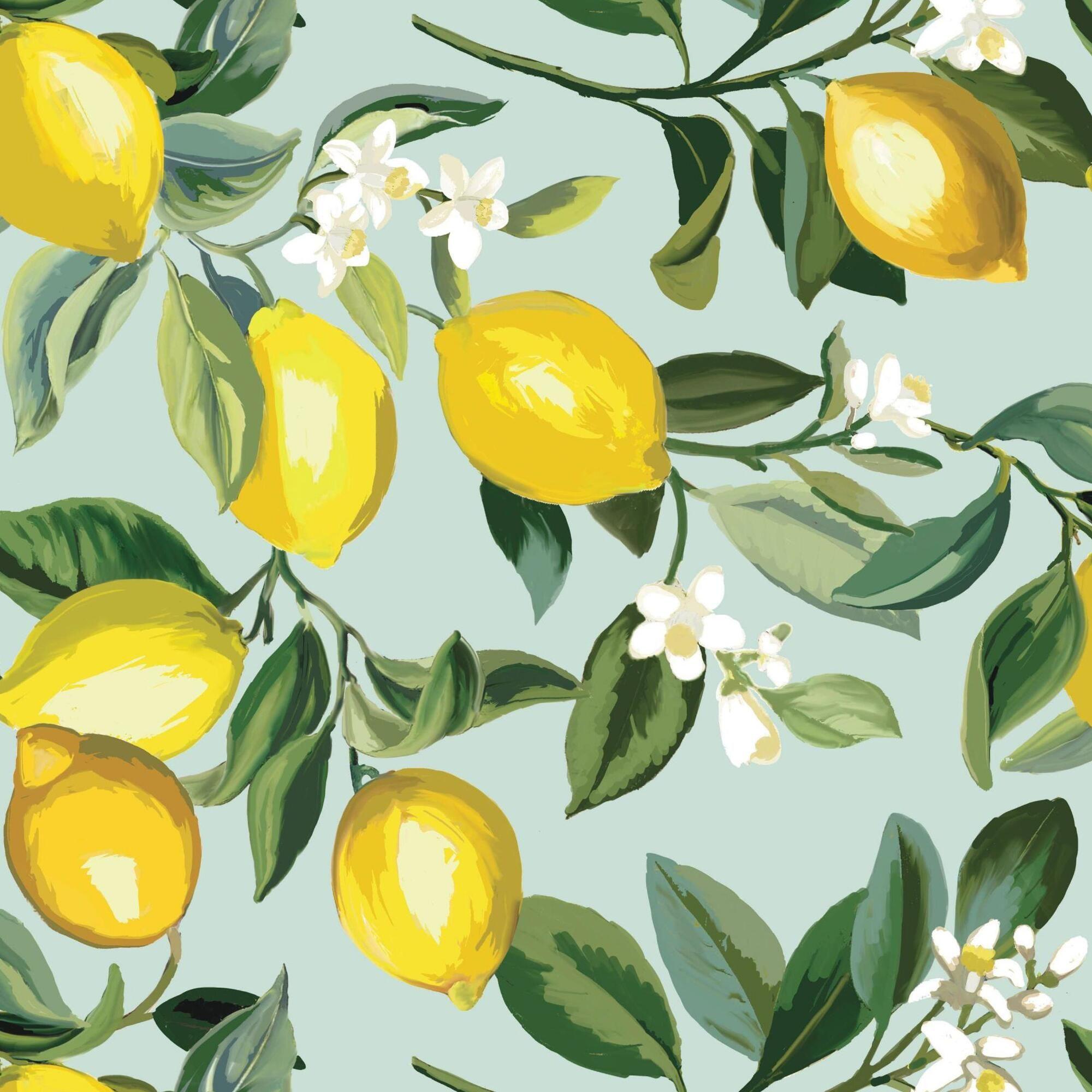 Light Blue And Yellow Lemon Peel And Stick Wallpaper By World Market Papierwande Tapeten Sticken
