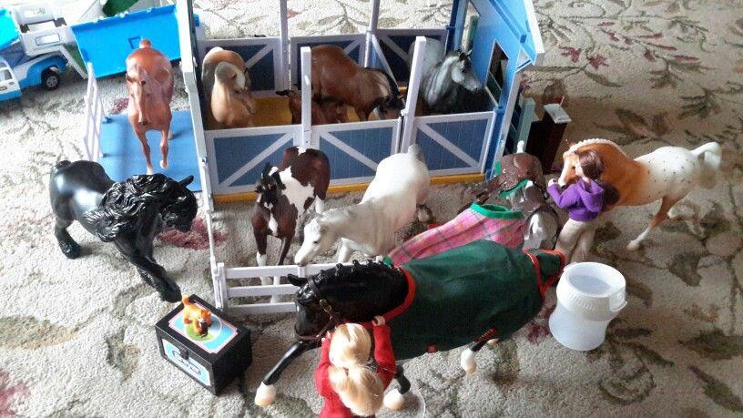The Barn Family ❤❤❤
