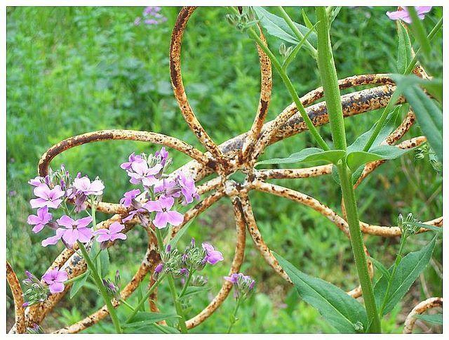 Rusty garden ornament